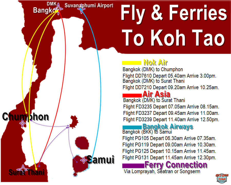 rute via fly n ferry